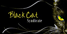 Black Cat Syndicate